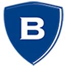 Borgestad Næringspark AS logo