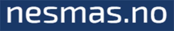 Nesna Maskinstasjon AS logo