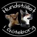 Hundstället i Göteborg logo