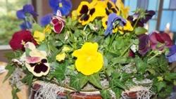 skicka blommor eskilstuna