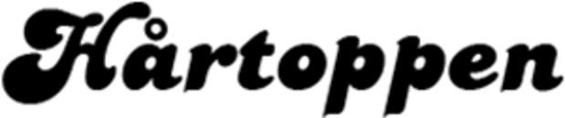 Hårtoppen v/Anette Falkner logo