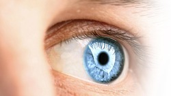 Bekkestua Øyelegesenter logo