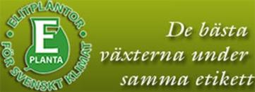 E-planta logo