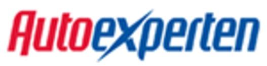 Autoexperten Detaljist i Sverige AB logo
