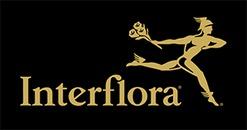 Iversens Eftf Blomster og Begravelsesbyrå AS logo