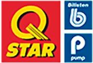 Qstar Blattnicksele logo