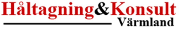 Håltagningskonsulten logo