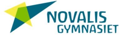 Novalisgymnasiet logo