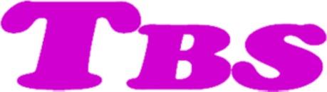 Tbs-Tekniska Byggnadsställningar I Göteborg logo