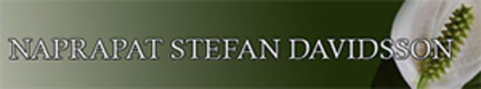 Naprapat Stefan Davidsson AB logo