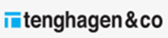 Tenghagen & Co AB, Epoxigolv logo