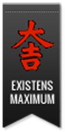 Existens Maximum Metodiken AB logo