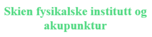 Skien fysikalske inst. og akupunktur logo