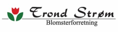 Trond Strøm Blomsterforretning Avd. Rørvik logo