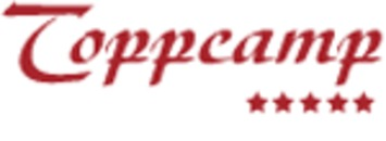 Drammen Isolering og Blikk logo