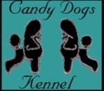Candy Dogs Linköping logo
