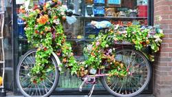 Fantastisk Cykelhandlare Jönköping   Företag   eniro.se FK-09
