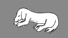 Fysioterapi Og Frisør For Hunde v/Britt Tank logo