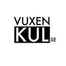 Vuxenkul Stigs Center logo