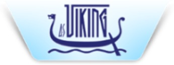 Viking International Transport og Spedition AS logo