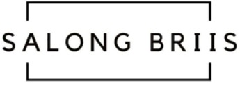 Salong Briis AS logo