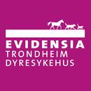 Evidensia Trondheim Dyresykehus logo