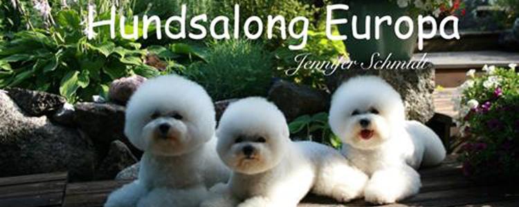 Hundsalong | Företag | eniro.se