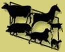 Aakirkeby Dyreklinik logo