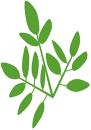 Lemvig Bio Brændsel ApS logo