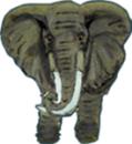 Tandlæge Ole Dalsgaard logo