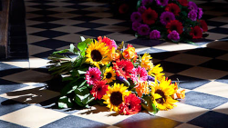 blomsterhandler i hjørring