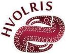 Hvolris Jernalderlandsby logo
