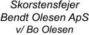 Skorstensfejer Bendt Olesen ApS v/ Bo Olesen logo