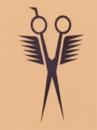 Salon Scan-Hair logo