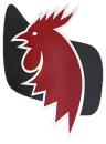 Bornholms Brandforsikring A/S logo