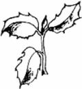 Vesteregnens Begravelsesforretning logo
