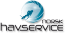 Norsk Havservice AS avd Trondheim logo