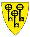 Kommunelegen i Gol logo