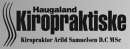 Haugaland Kiropraktiske avd Ølen logo