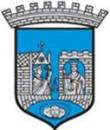 Trondheim kommune logo