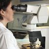 Laboratorieanalyser