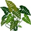 Plantasweden logo