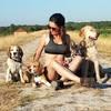 Canine Welfare Projects logo