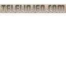 Telelinjen logo