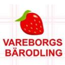 Vareborgs Bärodling AB logo