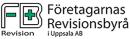 Företagarnas Revisionsbyrå i Uppsala AB logo