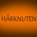 Hårknuten logo