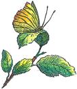 Carl von Linnékliniken AB logo