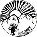 Föreningen Galaxen logo