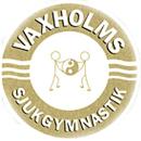 Vaxholms Sjukgymnastik logo